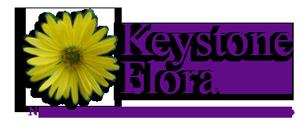 Keystone Flora